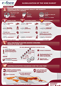 Wine Industry Infographic